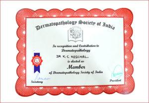 contribution to Dermatopathology