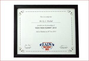 EADV india summit 2013